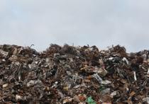Казанцы обратились к Путину в связи с планами строительства мусоросжигательного завода